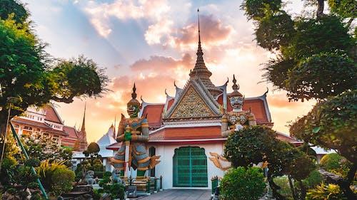 Fotos de stock gratuitas de antiguo, árbol, arquitectura, Buda