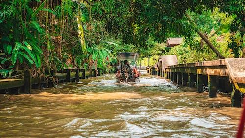 Free stock photo of floating market, market