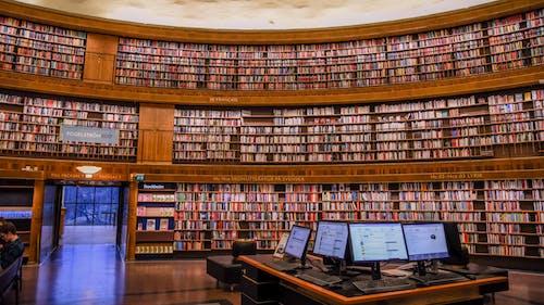 Kostenloses Stock Foto zu anders, ausbildung, bibliothek