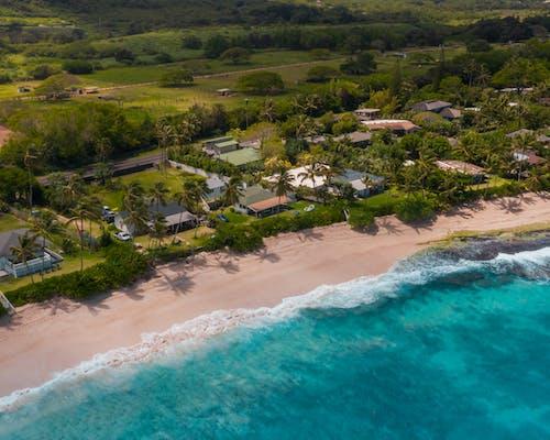 Gratis stockfoto met aan het strand, beachfront, Hawaii