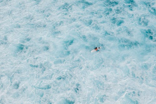 Person in Black and White Shirt Swimming in Blue Water