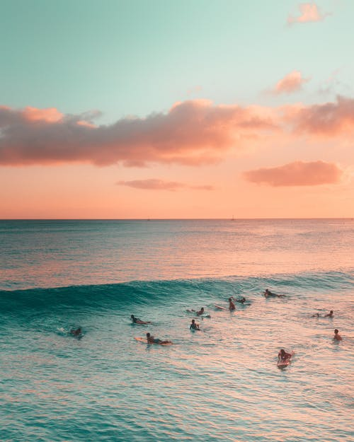 People Surfing on Sea during Sunset