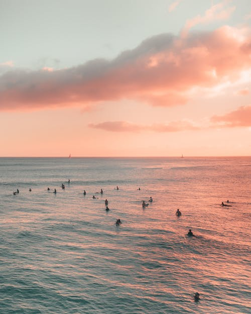 People on Sea during Sunset