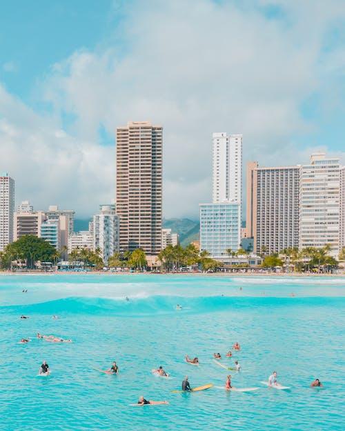 Free stock photo of blue, evening sun, hawaii