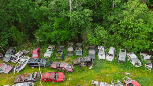 Crashed cars on meadow in green forest