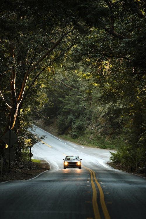 光, 光線, 公路旅行 的 免費圖庫相片