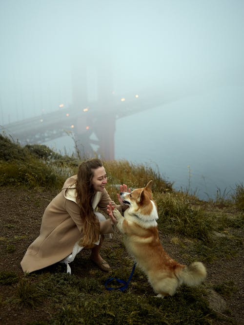 Young cheerful woman playing with corgi on foggy day