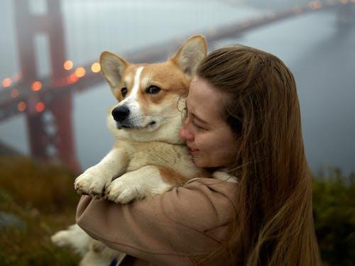 Foto d'estoc gratuïta de a l'aire lliure, abraçada, abraçar, adorable