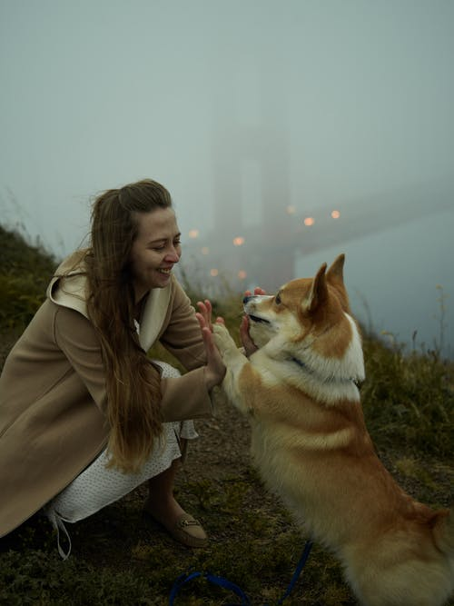 Young happy lady playing with cute Corgi on misty day