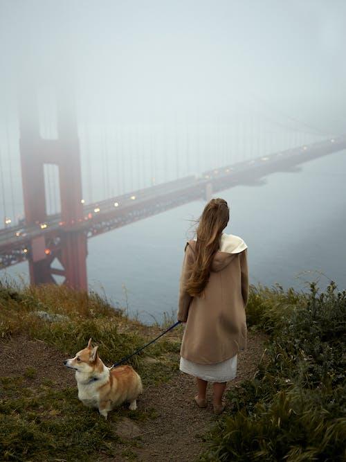 Anonymous woman with corgi on lead admiring Golden Gate Bridge