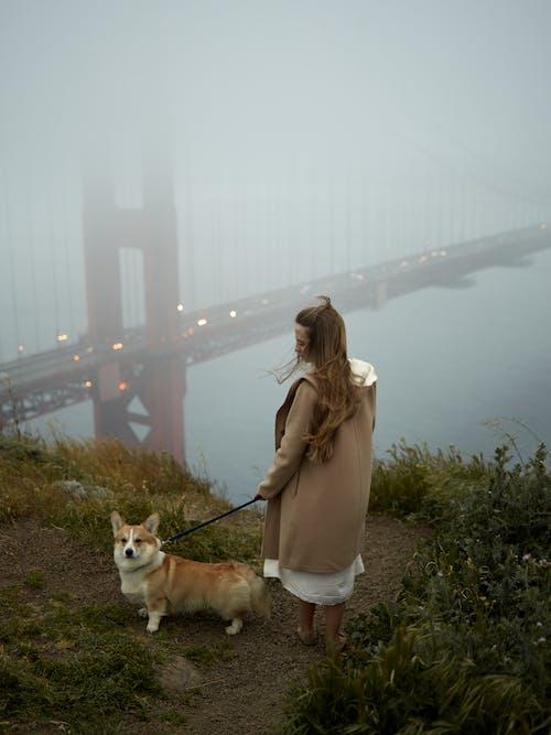 Lady with corgi near Golden Gate Bridge on misty day