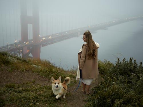 Woman walking funny little dog near bridge on foggy weather