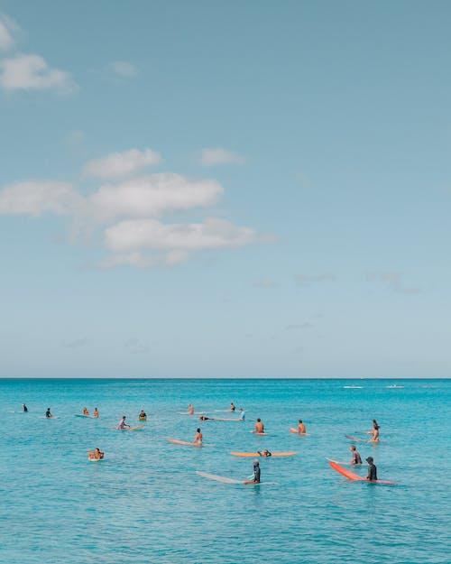 冲浪摄影, 夏威夷, 天堂, 太陽 的 免费素材图片