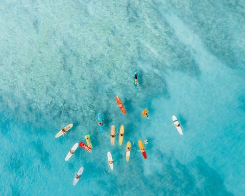 オアフ, サーファー, サーフィンの無料の写真素材