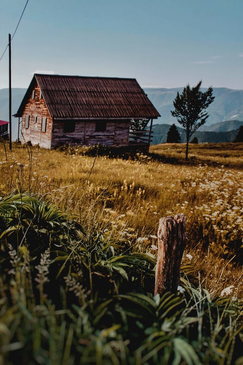 Lonely aged wooden house in peaceful countryside
