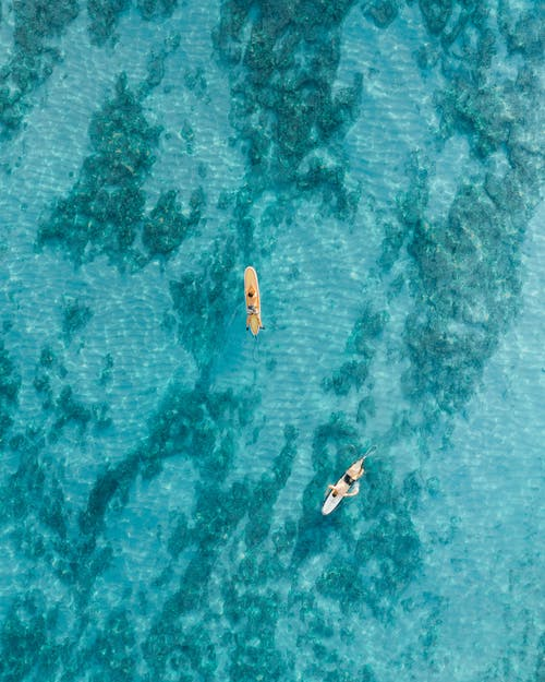 Aerial View of People Riding on Boat on Body of Water