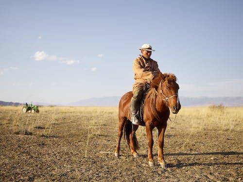 Fotobanka sbezplatnými fotkami na tému Ázia, ázijský, bylinka, chovateľ dobytka