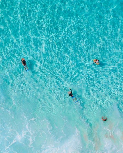 People Swimming in the Sea