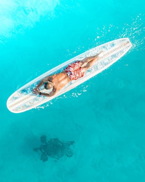 Δωρεάν στοκ φωτογραφιών με snorkeling, αναψυχή, βρεγμένος, γαλαζοπράσινος