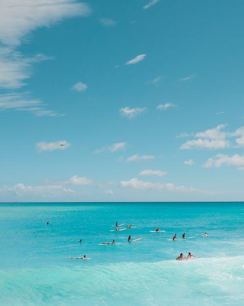 冲浪摄影, 夏威夷, 天堂 的 免费素材图片