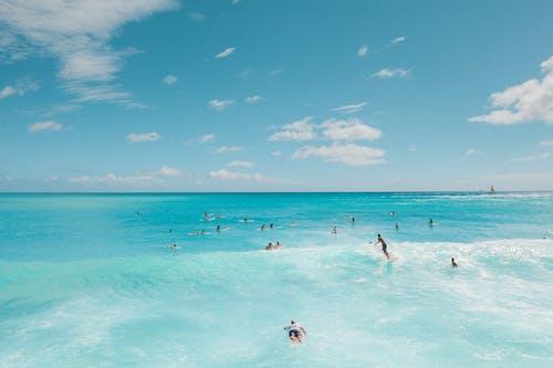 冲浪摄影, 地平線, 夏威夷 的 免费素材图片