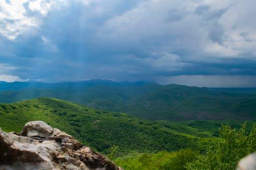 樹林, 雨, 雨雲, 雲 的 免費圖庫相片