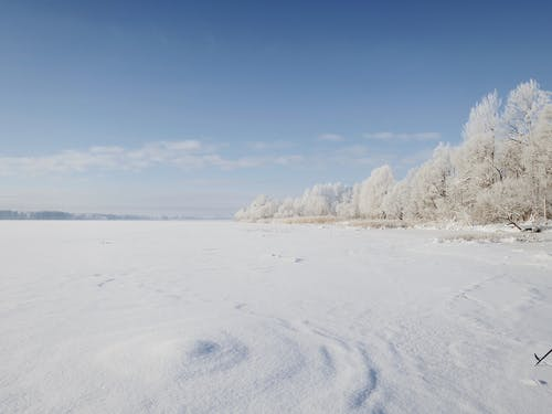 Scenic landscape of snowy field on winter sunny day