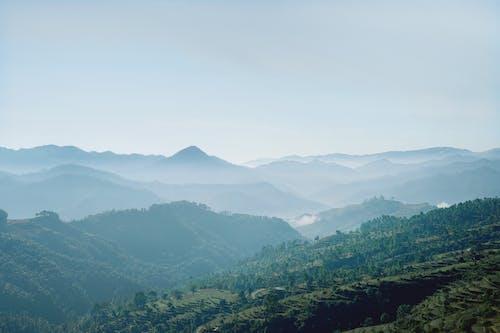 Gratis stockfoto met berg, boom, buitenshuis, dageraad