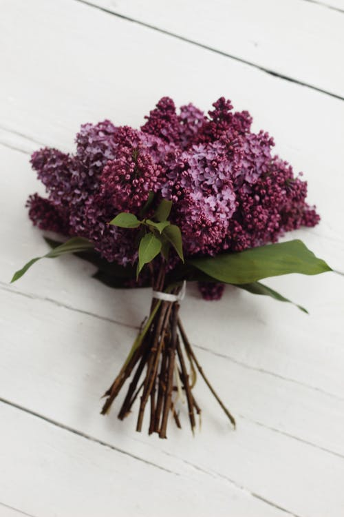 Top view of bouquet of organic lilac flowers placed on white wooden table on spring day