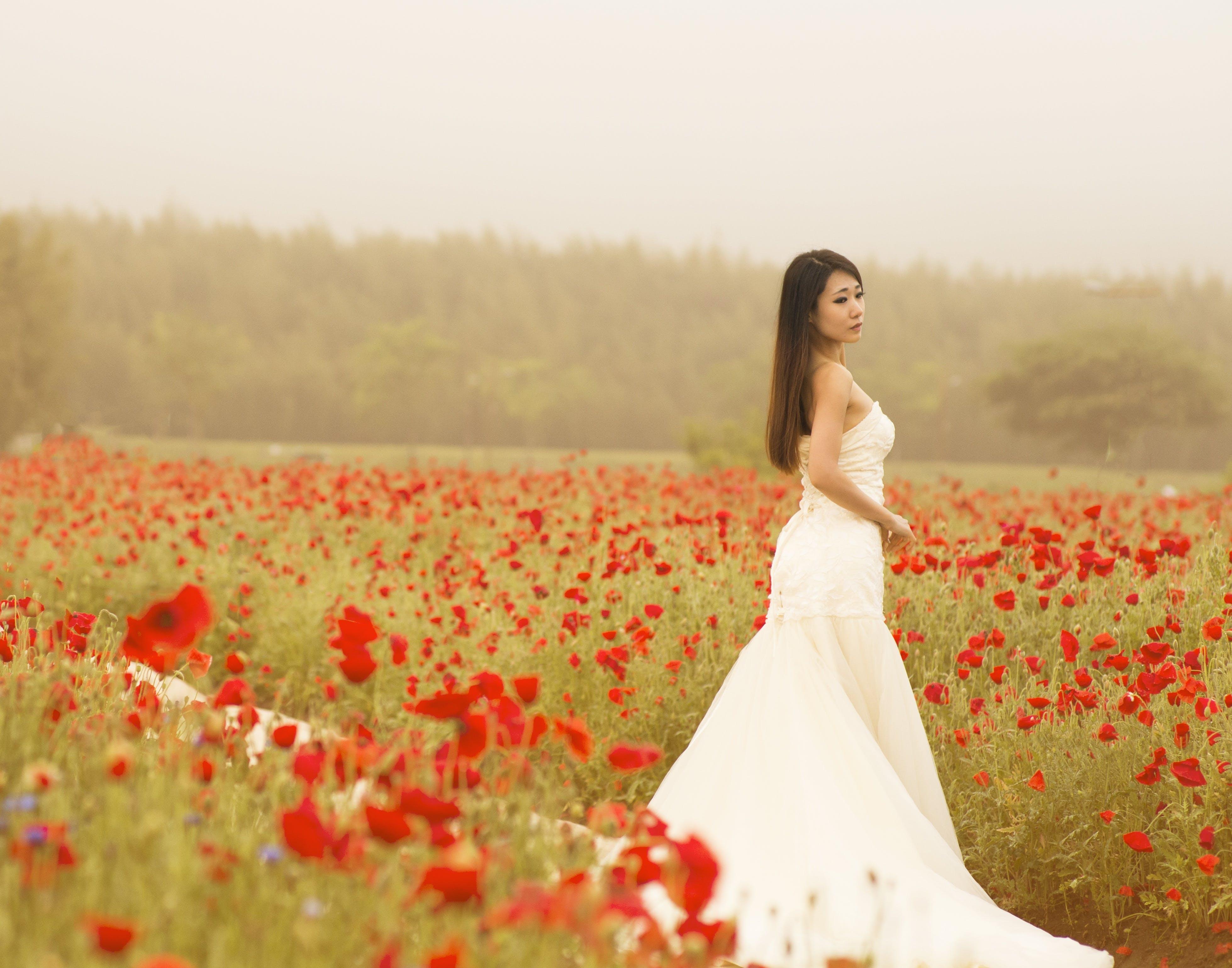 Woman in White Dress in Flower Field
