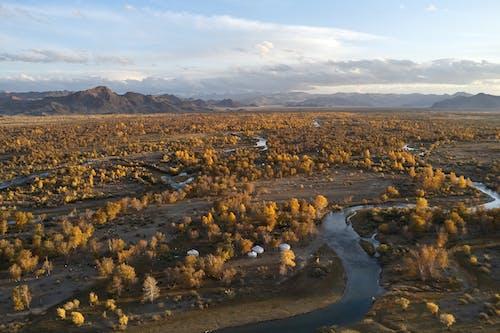Autumn forest landscape among river creeks