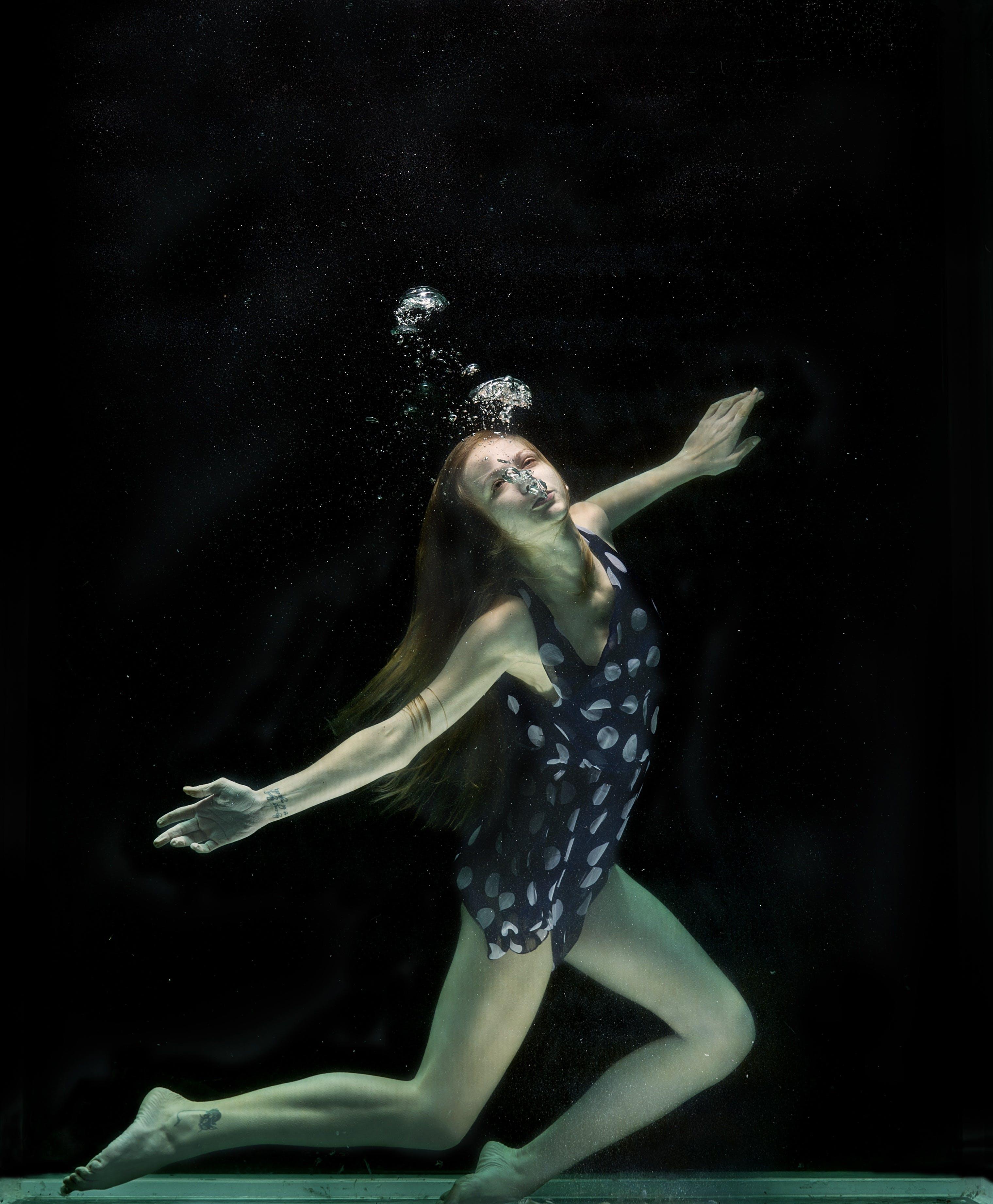 aesthetics, aquarium, art