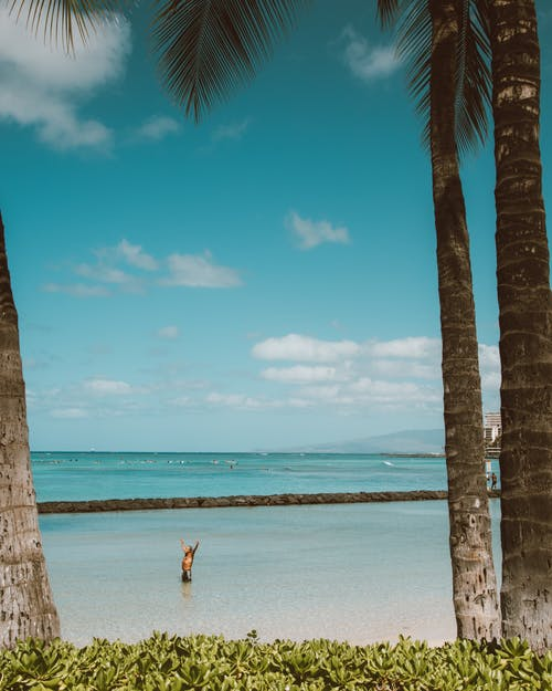 Woman in White Bikini Walking on Beach