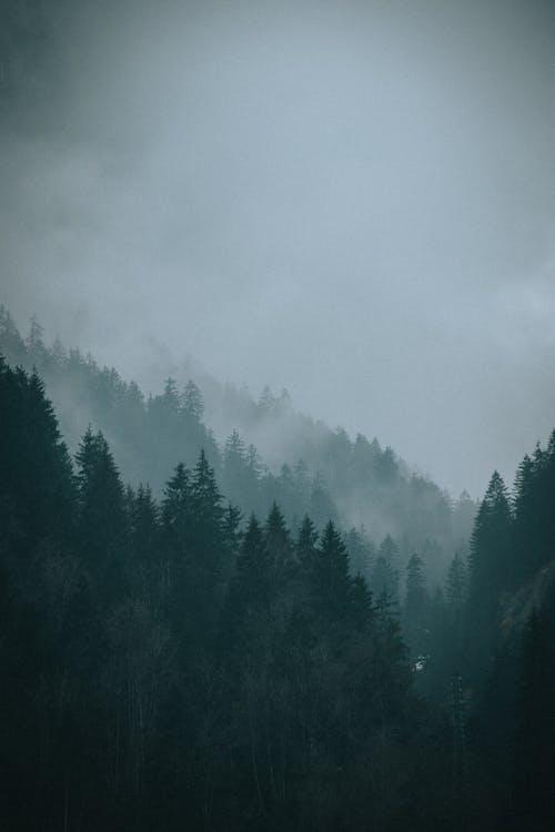 Бесплатное стоковое фото с атмосфера, беззвучный, безмятежный, бесшумный