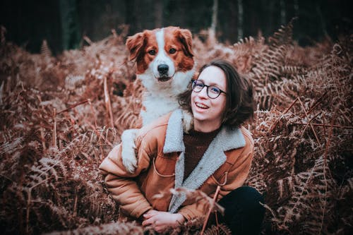 Purebred dog embracing happy woman near autumn leaves