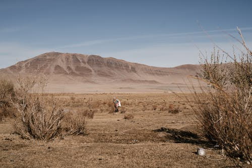 Woman walking along steppe in sunny day