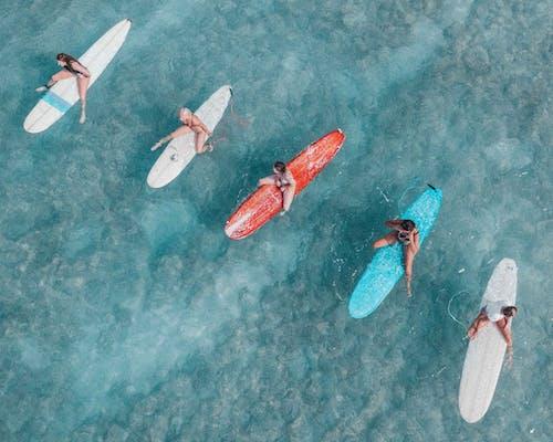 Безкоштовне стокове фото на тему «surfs, бірюза, веселий, відпустка»