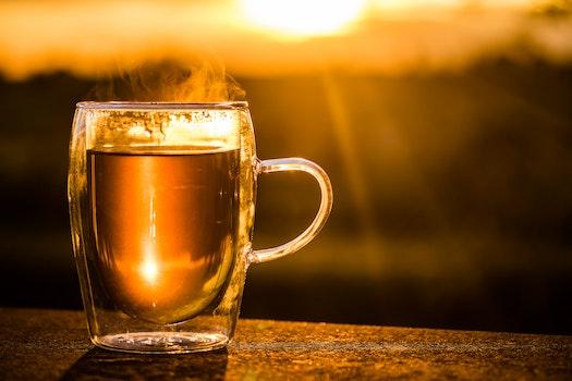 Free stock photo of sunset, mug, dark, glass