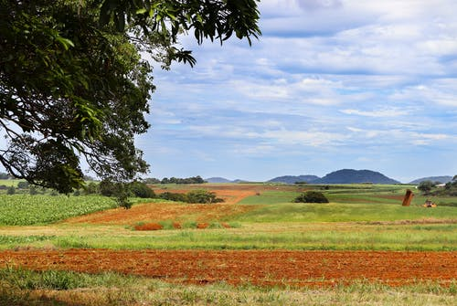 Free stock photo of australia, country, farm