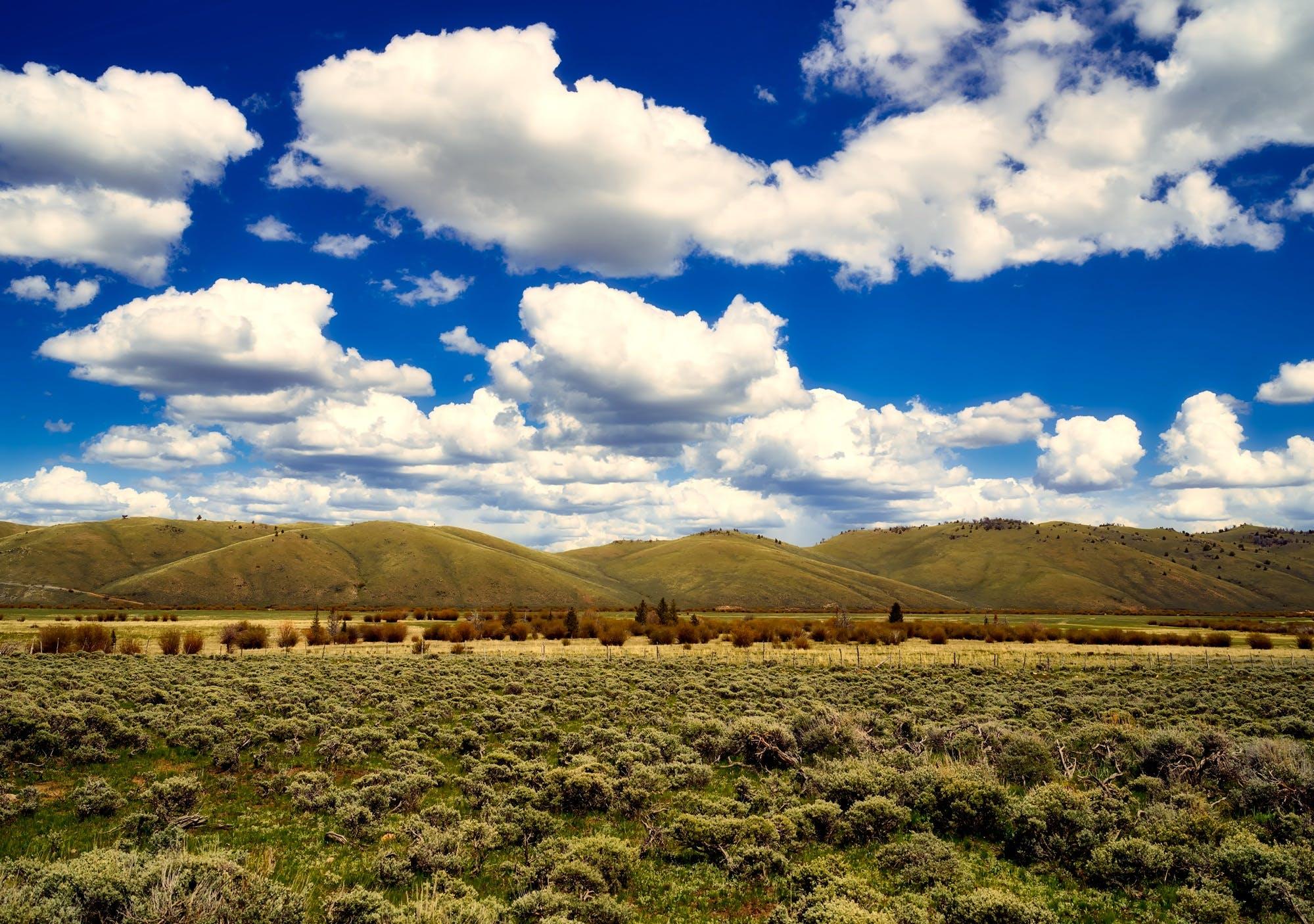 天性, 天空, 工厂, 景觀 的 免费素材照片