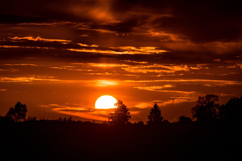 Δωρεάν στοκ φωτογραφιών με Ανατολή ηλίου, αυγή, δέντρα, δύση του ηλίου