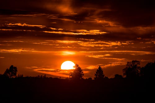 Бесплатное стоковое фото с восход, деревья, закат, небо