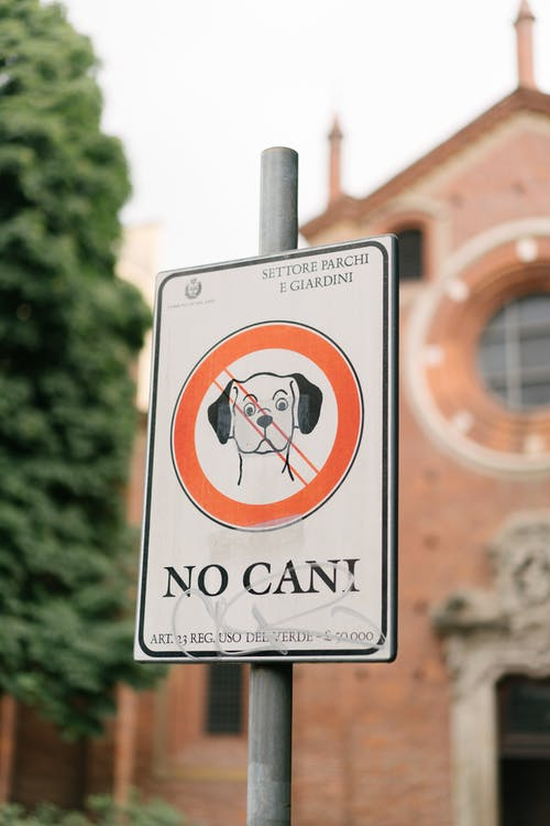 Original sign prohibiting entrance to park with dogs with inscription in Italian against blurred ancient basilica