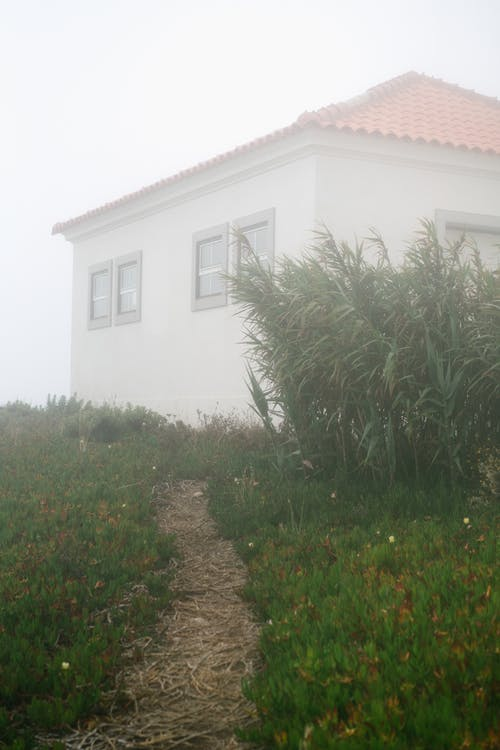 Narrow path between grass leading to old house in countryside in cloudy weather
