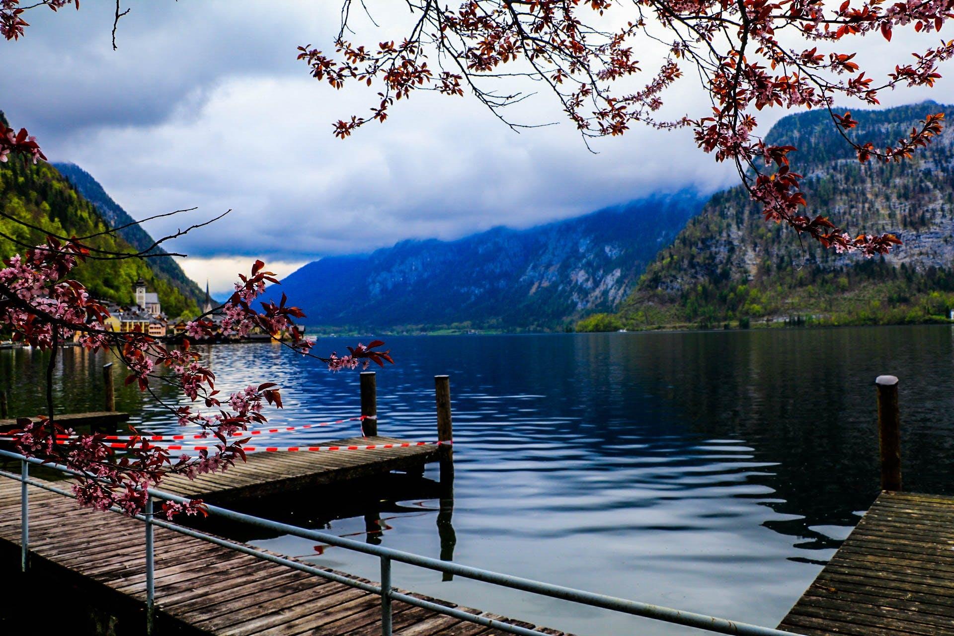 daylight, dock, lake