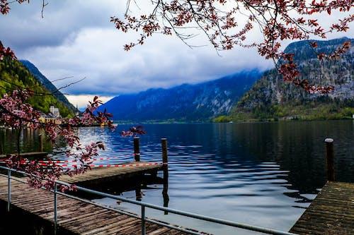 Gratis arkivbilde med dagslys, fjell, landskap, refleksjon