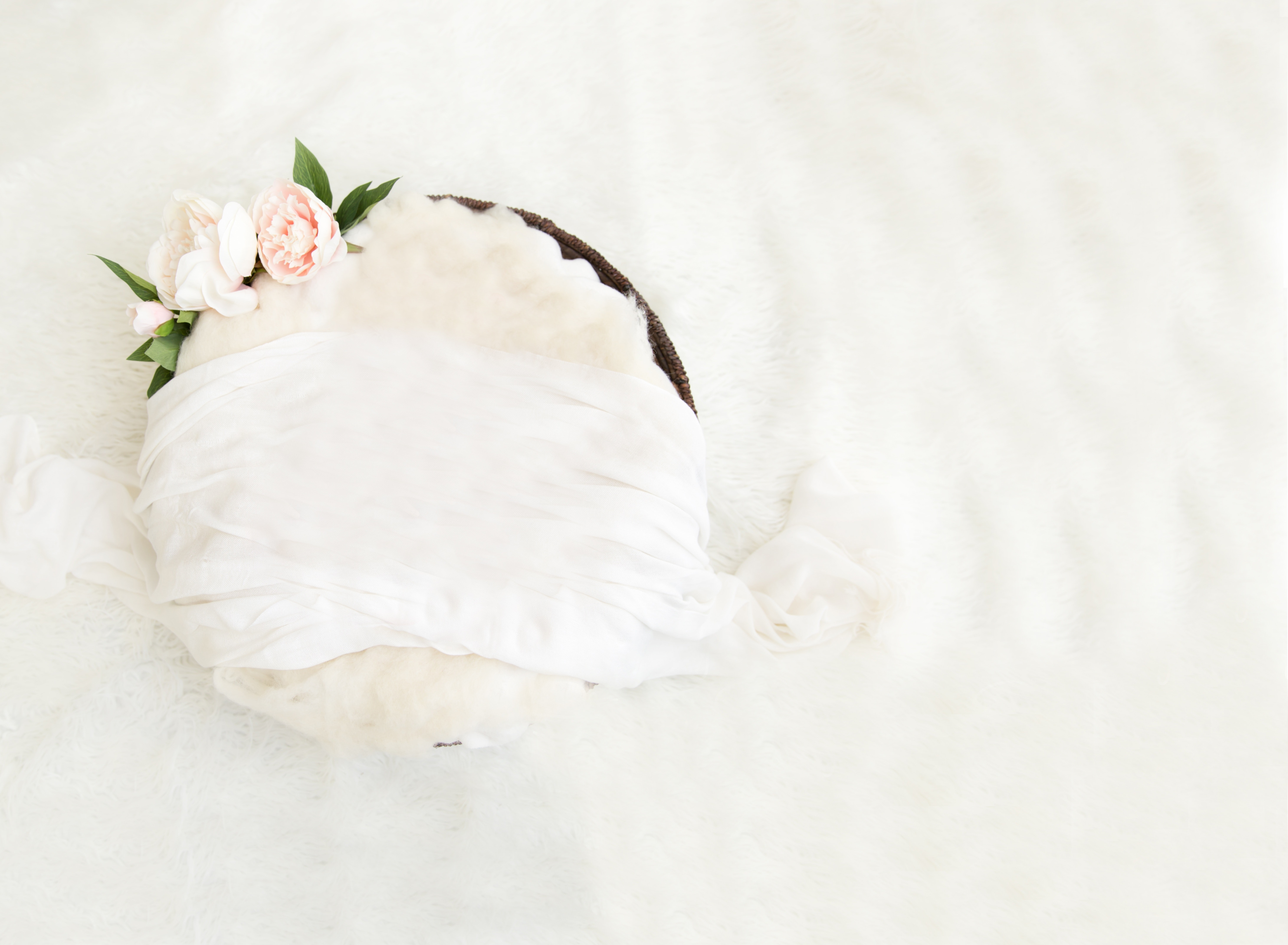 Free Stock Photo Of Baby Backdrop For Newborn Floral