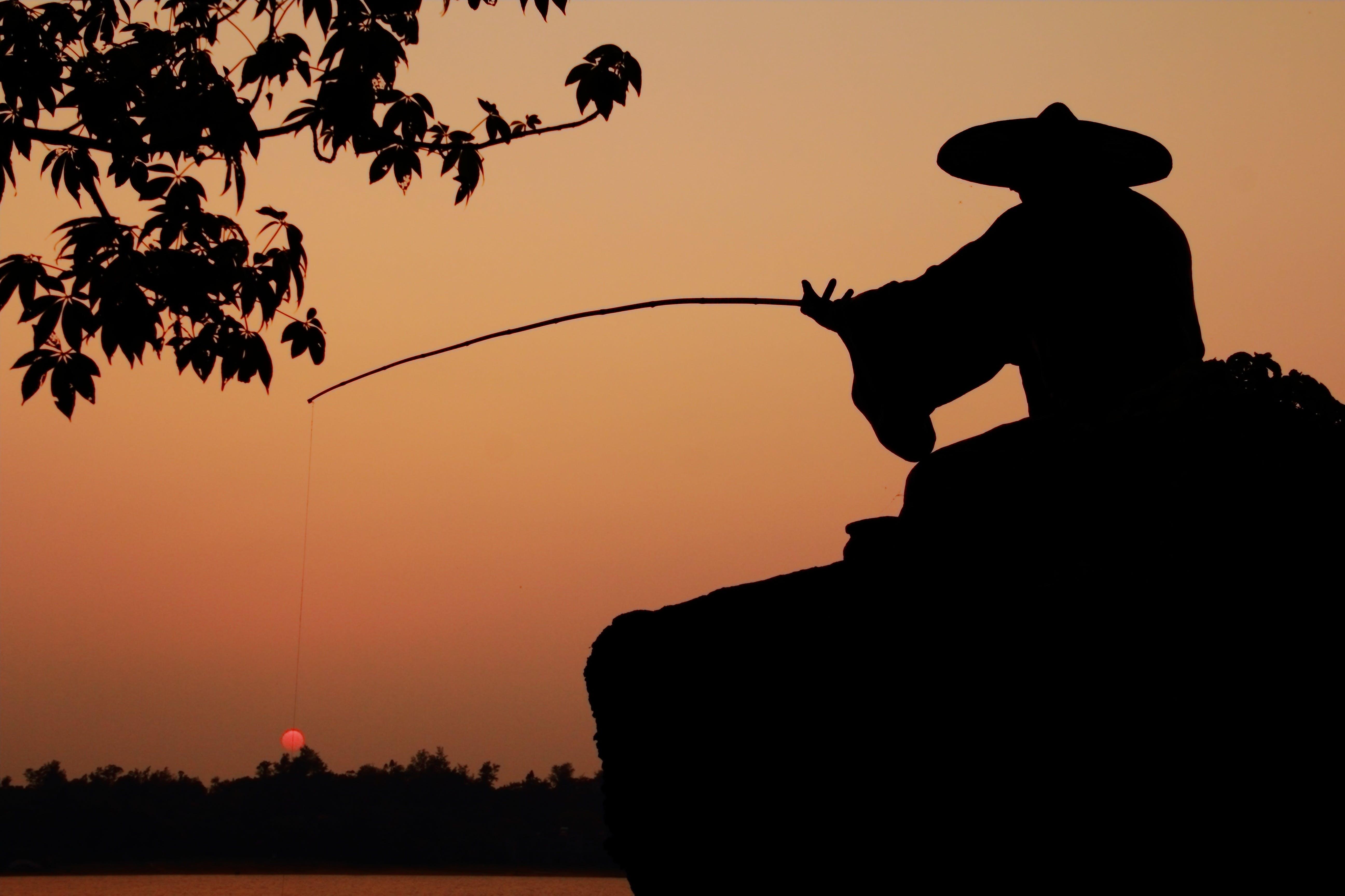 Free stock photo of fishing, light, dawn, landscape