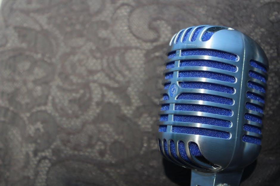 Audio instrument mic microphone
