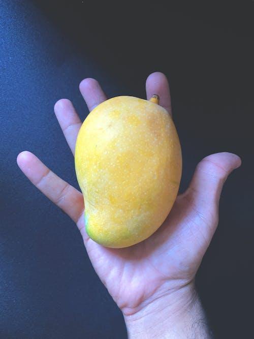 Free stock photo of big mango, close-up, fingers, hands